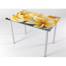 Кухонный стол КТ-8